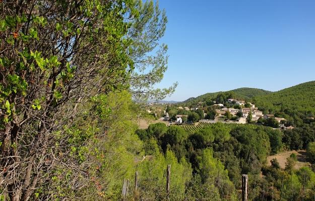 Languedoc, fonds de commerce à vendre