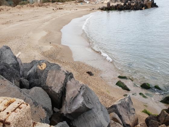 Occitanie, en bord de mer camping à vendre
