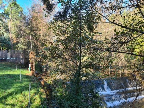 Arrière-pays Languedocien camping en vente